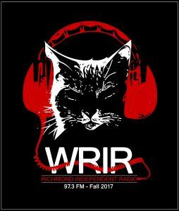 It's a cat wearing headphones - WRIR
